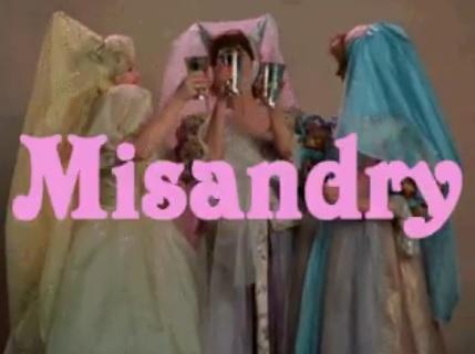 misandry.jpg